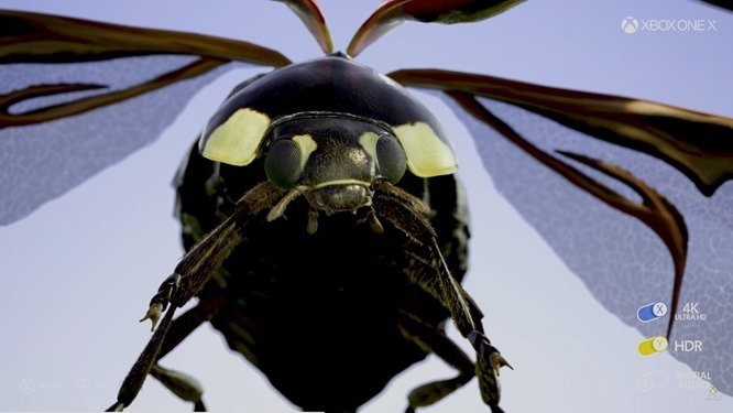 xbox-one-x-4k-insect[1]